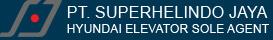 HYUNDAI ELEVATOR SOLE AGENT